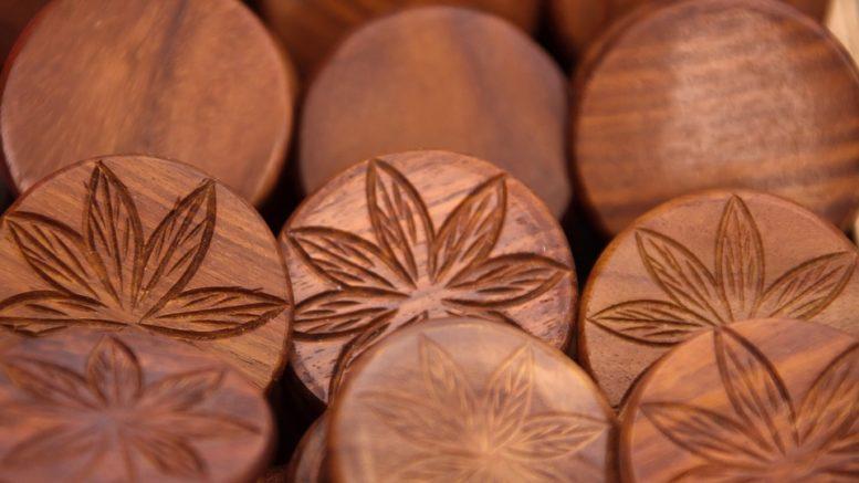 """Aurora Cannabis si muove verso la """"Cannabis Biotech"""""""